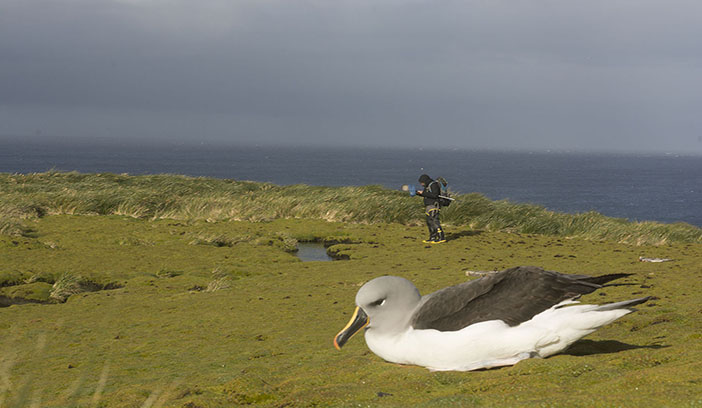 UNT Sub-Antarctic Biocultural Conservation Program earn honors for work in Chile