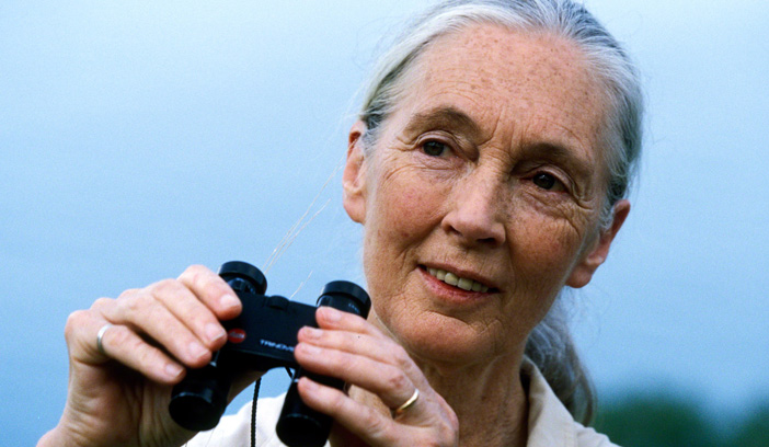 Jane Goodall to speak as part of UNT'S Distinguished Lecture Series